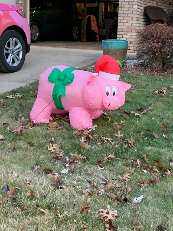 Puffy the Pig Lives!